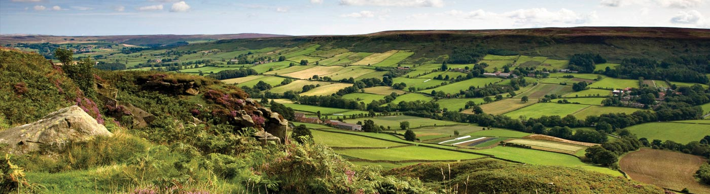 Sheltered Valleys and Panoramic Moorland