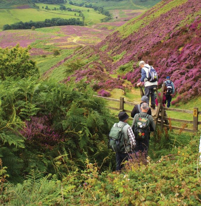 walkers in the moors