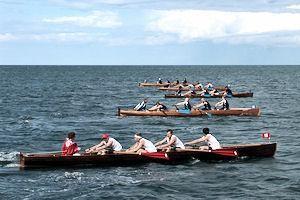 Regatta rowing