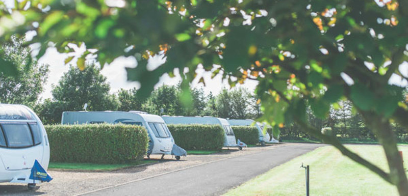 touring caravans at a camping and caravan park around whitby