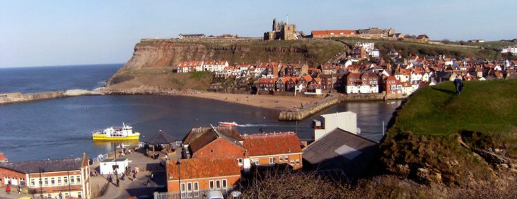 view of the bay with a Whitby town tour boat pulling in