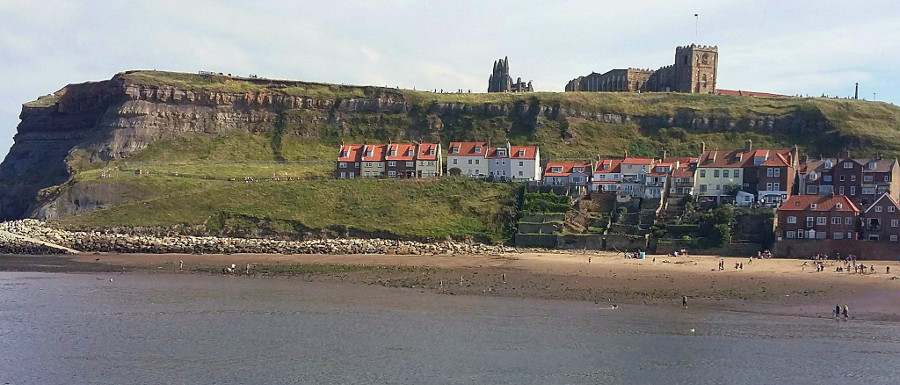 Beach and cliffs to go when hunting Whitby fossils