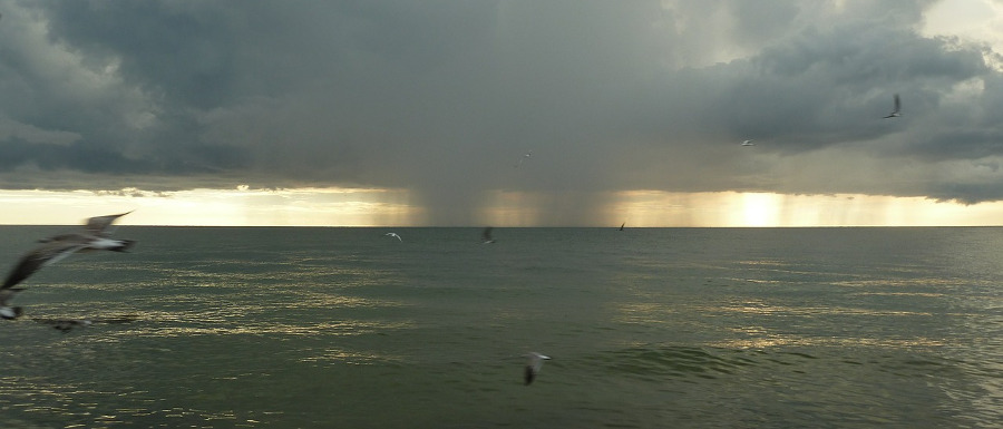 rain on the sea