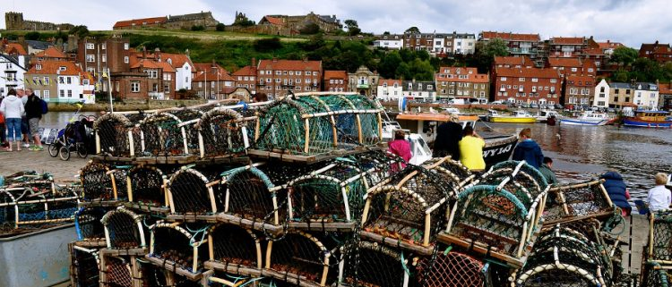 harbourside lobster nets at the Whitby Fish and Ships Festival
