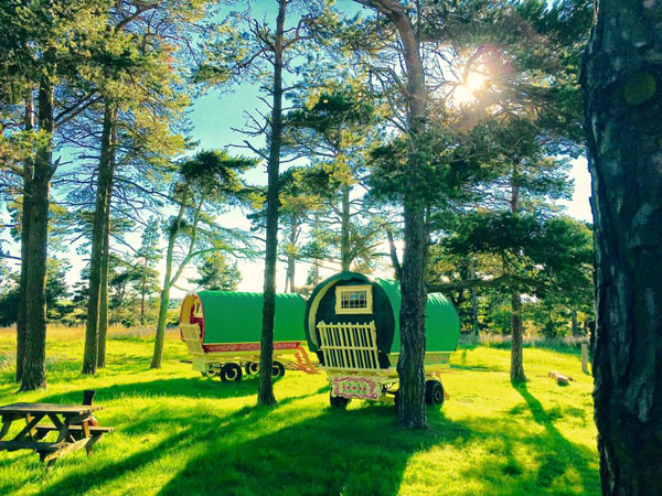 North Shire - Camping & Caravanning, Liverton