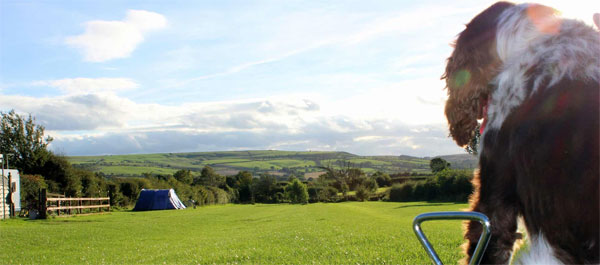 Picturesque Serenity Touring Caravan & Camping Park, Whitby