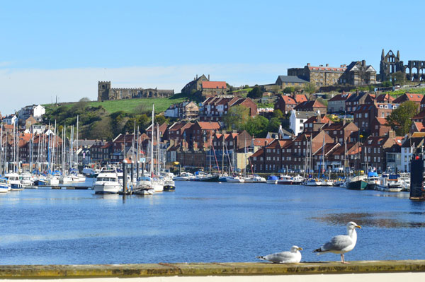 Stunning view from Esk View, Whitby Holiday Cottages